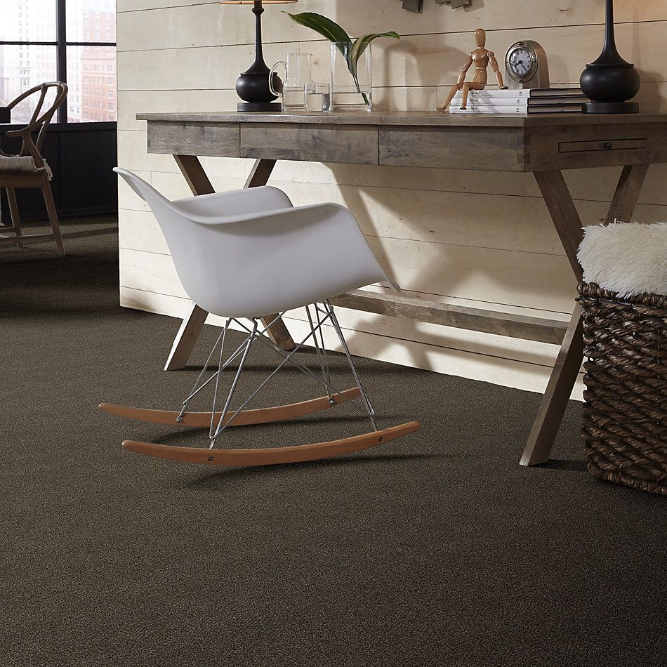 Shaw Floors Simply The Best Boundless I Net Chestnut Ridge 00751_5E503