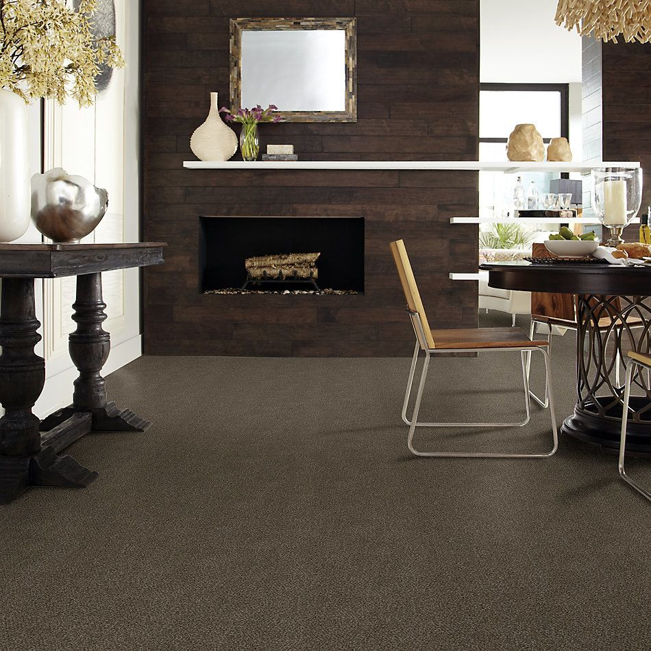 Shaw Floors Simply The Best Boundless II Net Chestnut Ridge 00751_5E504