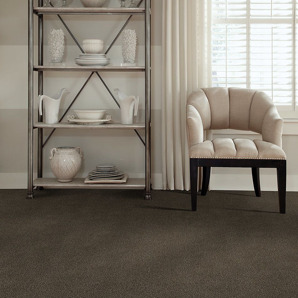 Shaw Floors Simply The Best Boundless III Net Chestnut Ridge 00751_5E505