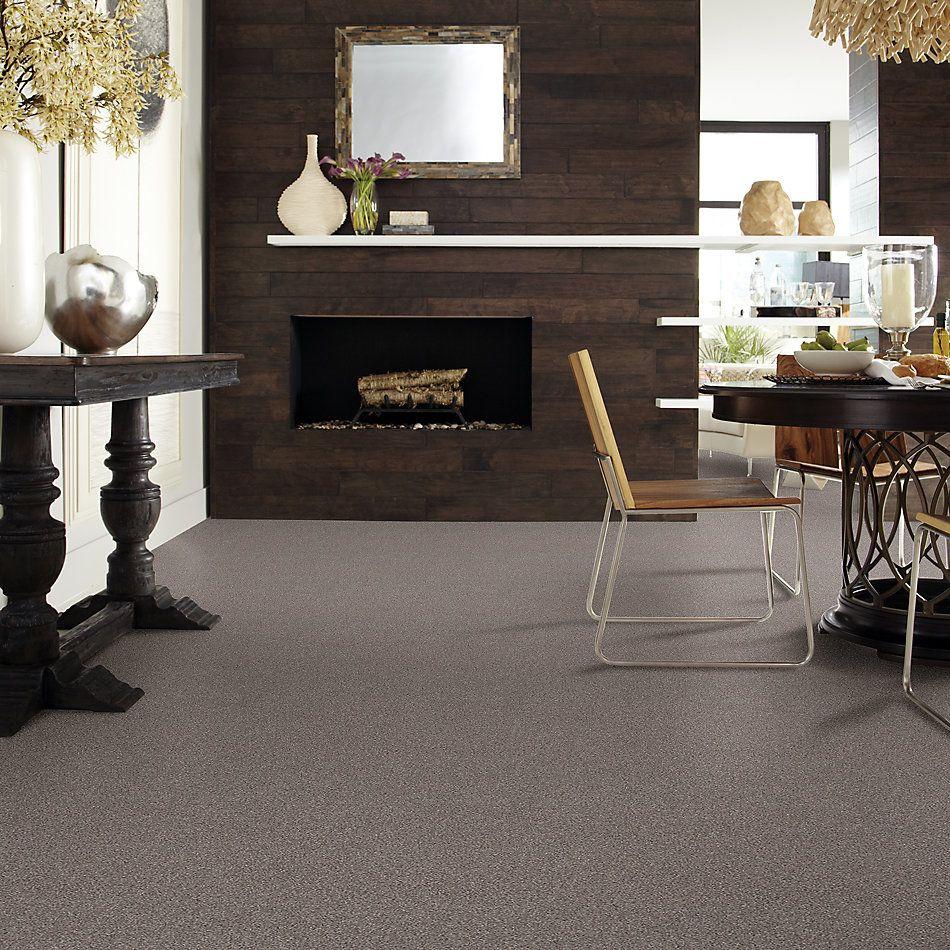 Shaw Floors Caress By Shaw Cozy Harbor I Ridgeview 00751_CC78B