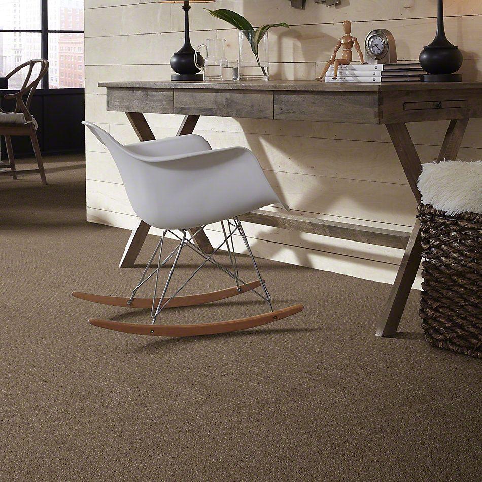 Shaw Floors My Choice Pattern Flax 00751_E0653
