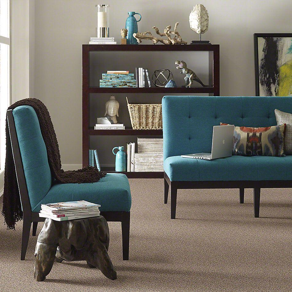 Shaw Floors You Know It Stunning 00751_E0807