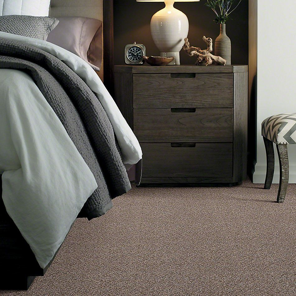Shaw Floors Simply The Best Cabana Life (b) Brown Reed 00751_E9959