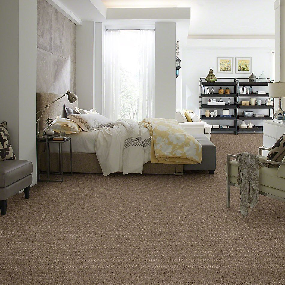 Shaw Floors SFA My Inspiration Pattern Flax 00751_EA562