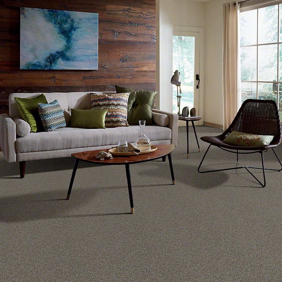 Shaw Floors Shaw Design Center My Destination III Rustic Elegance 00752_5C777