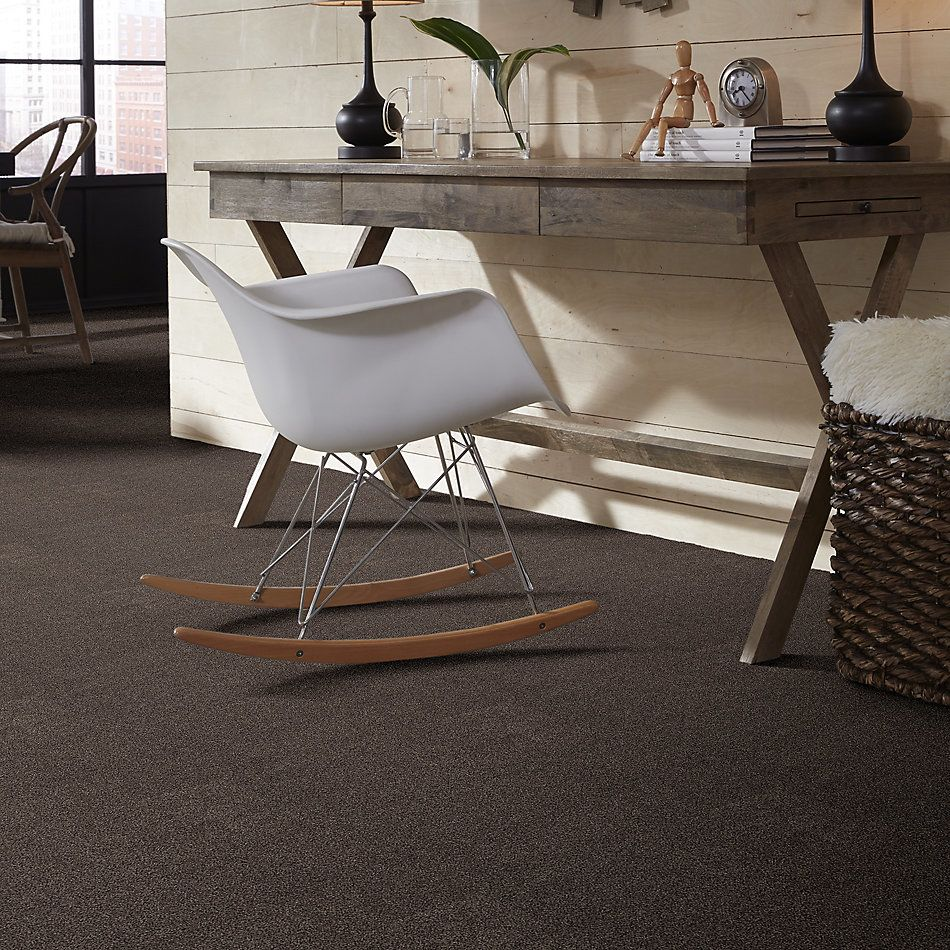 Shaw Floors Value Collections Cozy Harbor I Net Burma Brown 00752_5E364