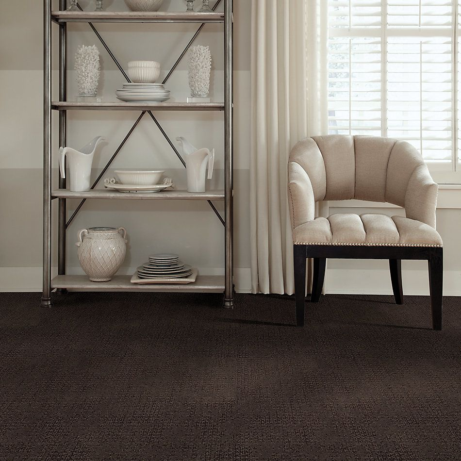 Shaw Floors Value Collections Artistic Presence Net Burma Brown 00752_5E374