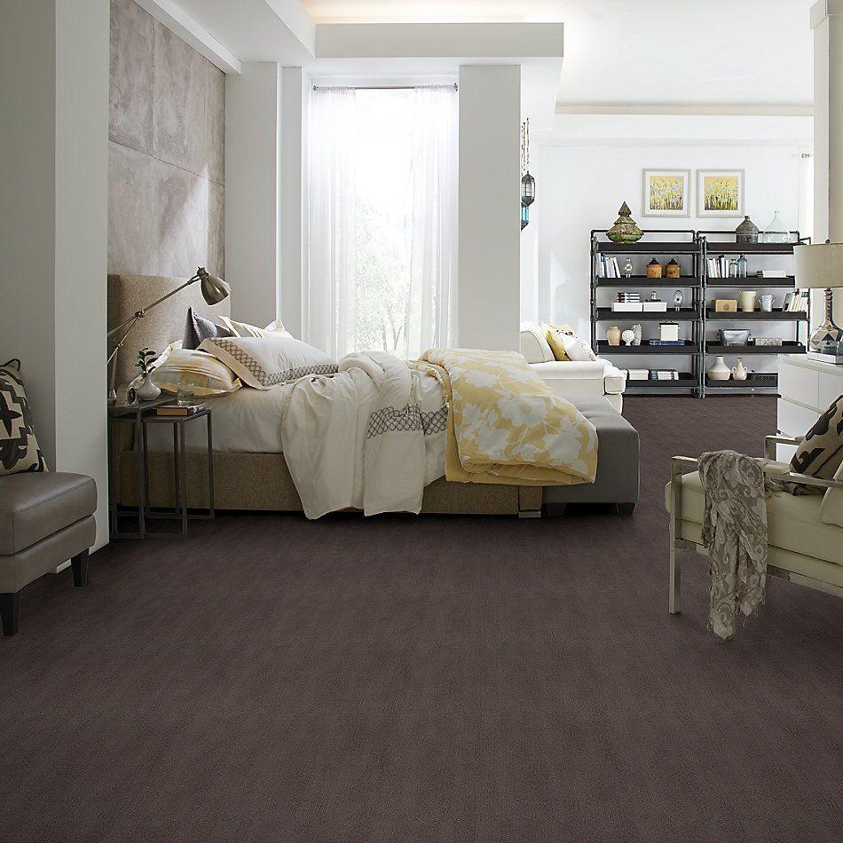 Shaw Floors Caress By Shaw Vintage Revival Net Burma Brown 00752_5E381