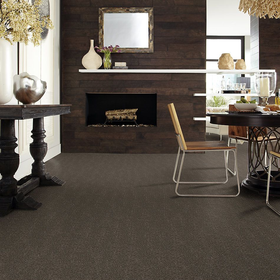 Shaw Floors Simply The Best Boundless II Cabana 00752_5E486