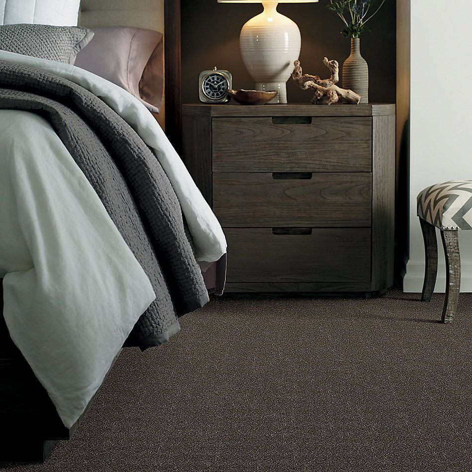 Shaw Floors Simply The Best Boundless Iv Cabana 00752_5E488
