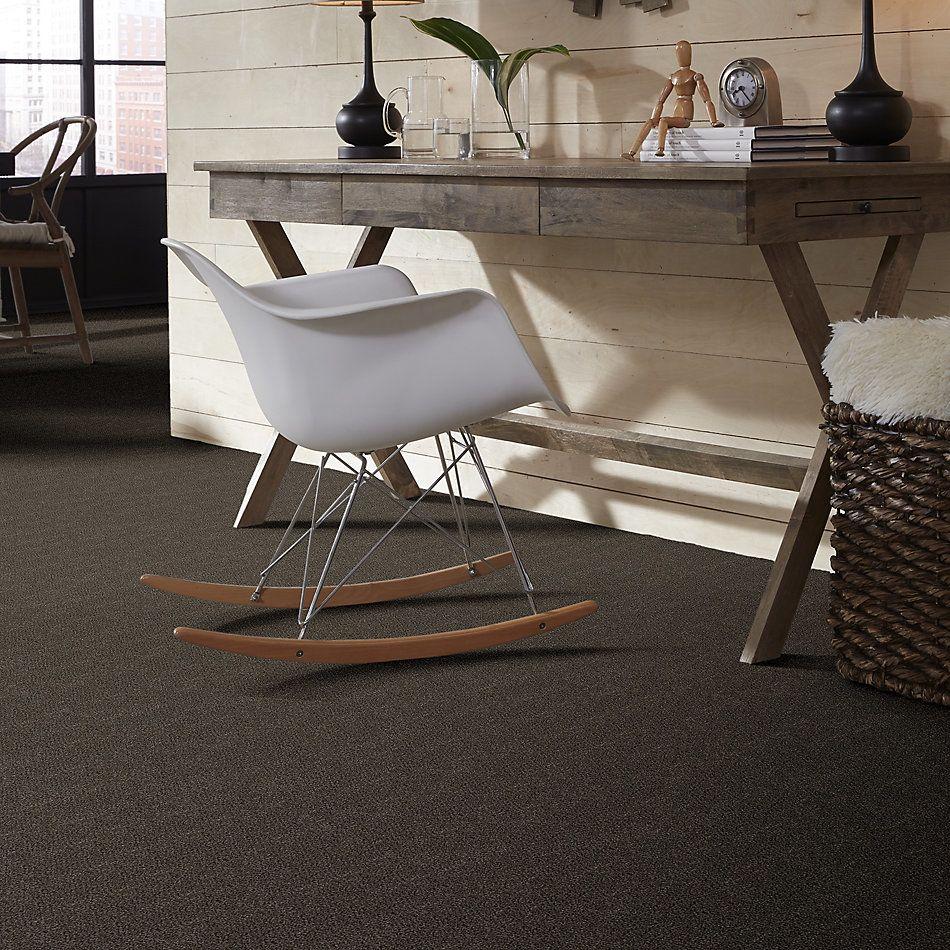Shaw Floors Simply The Best Boundless I Net Cabana 00752_5E503