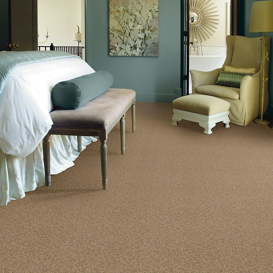 Shaw Floors St Jude Butterfly Kisses II Riverbank 00752_JD301