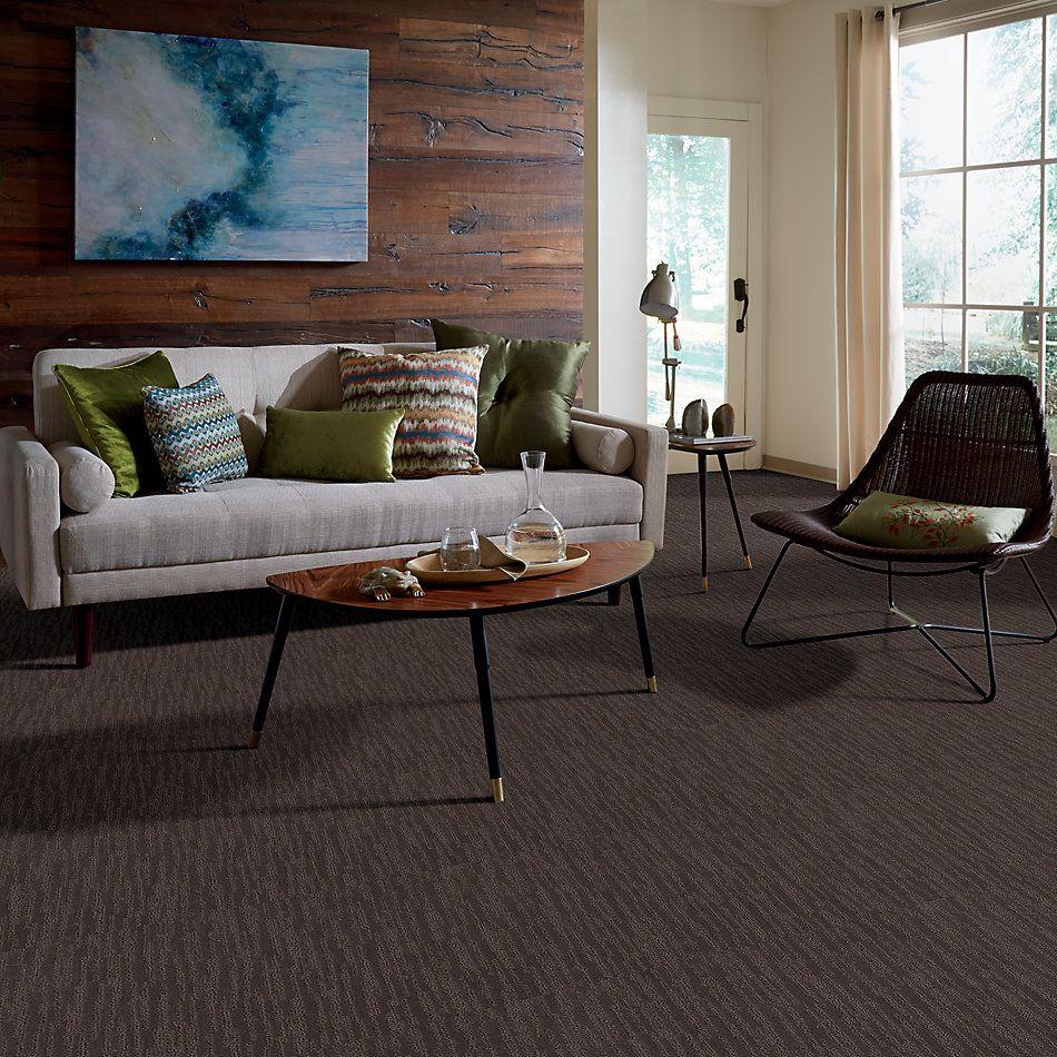 Shaw Floors Caress By Shaw On The Horizon Burma Brown 00752_CC64B