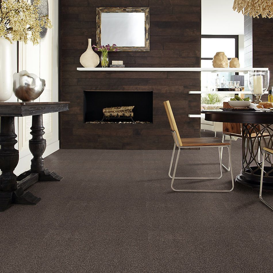 Shaw Floors Caress By Shaw Cozy Harbor I Burma Brown 00752_CC78B