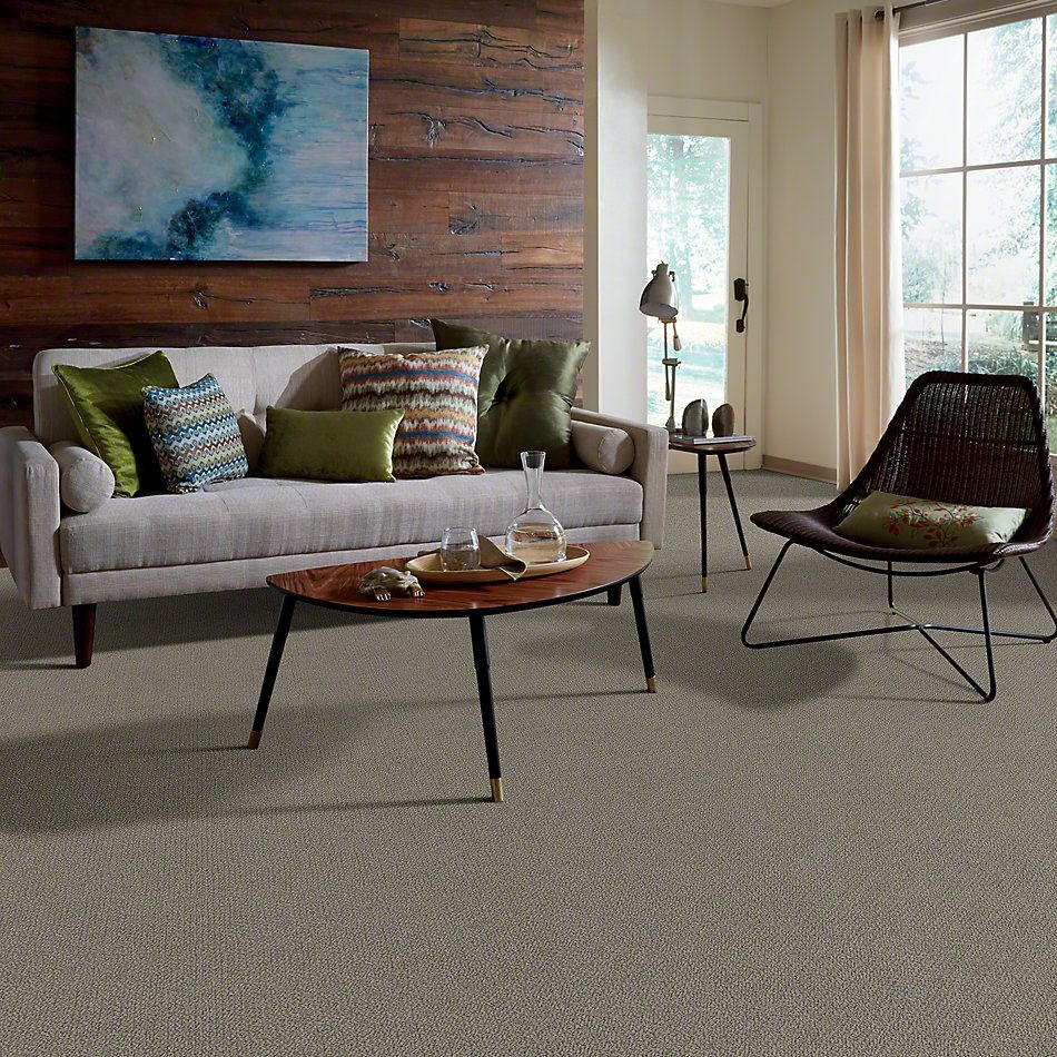Shaw Floors Truly Relaxed Loop Rustic Elegance 00752_E0657