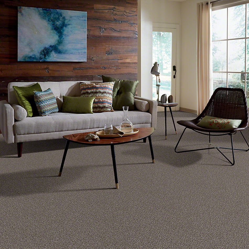 Shaw Floors Make It Yours (s) Dockside 00752_E0819
