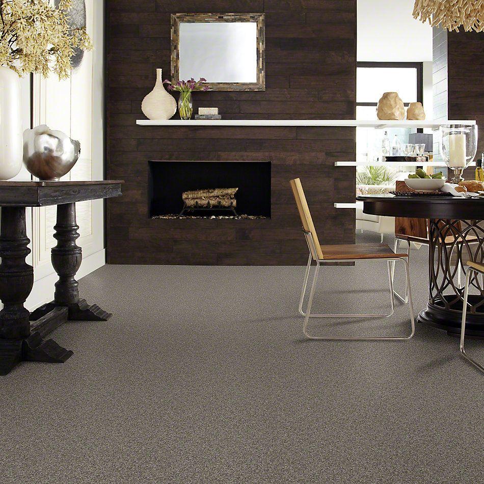 Shaw Floors SFA My Inspiration I Rustic Elegance 00752_EA559