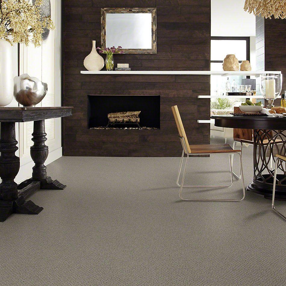 Shaw Floors SFA Artist View Loop Rustic Elegance 00752_EA566