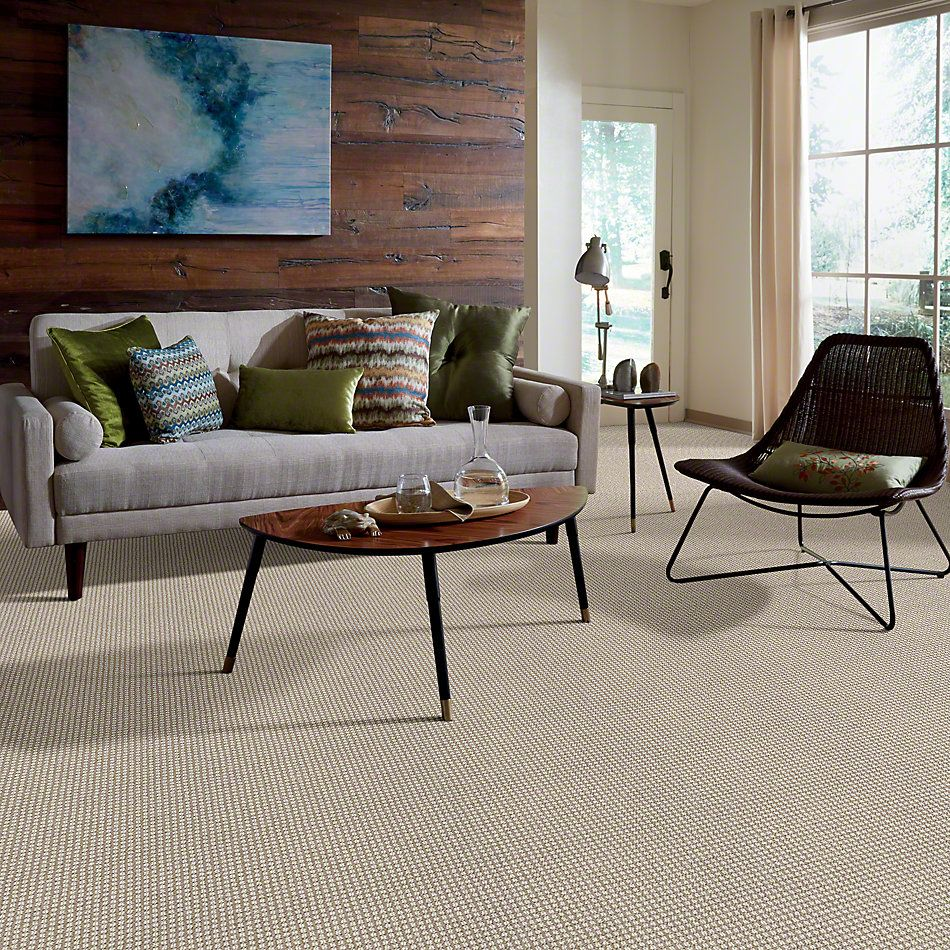 Anderson Tuftex Abbey's Road Chic Taupe 00752_ZZ013