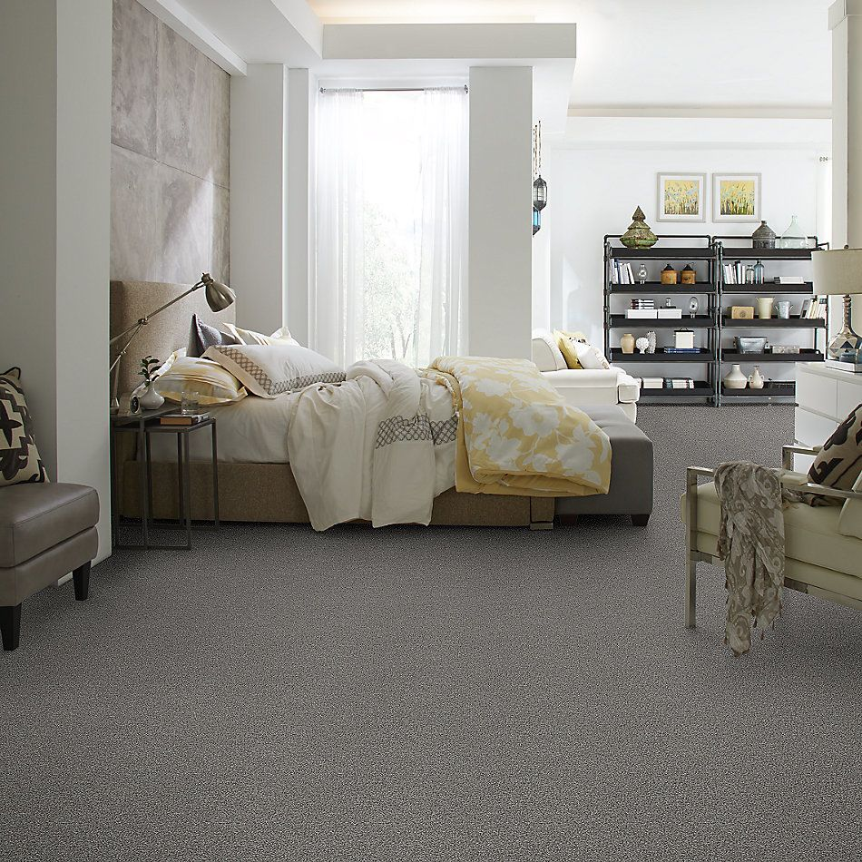 Shaw Floors Shaw Flooring Gallery You Found Me Fog 00753_5558G