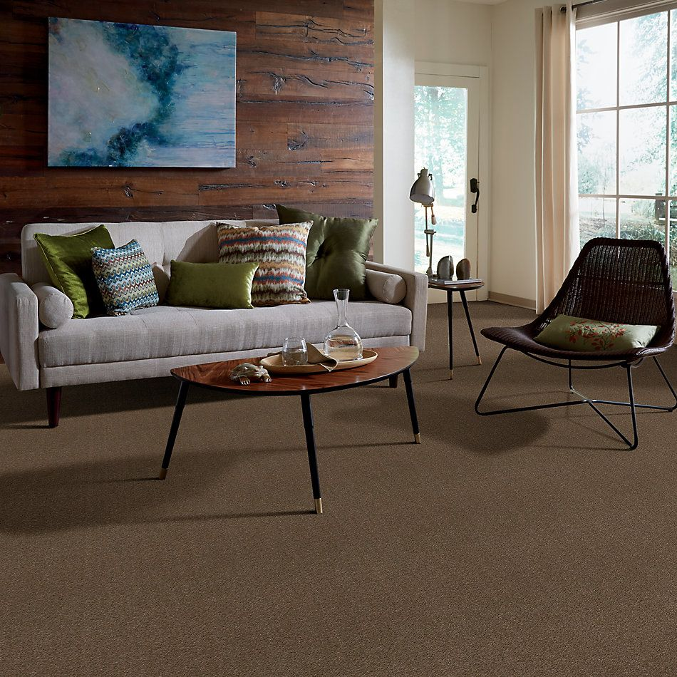 Shaw Floors Value Collections Heroic Net Toffee 00753_5E386