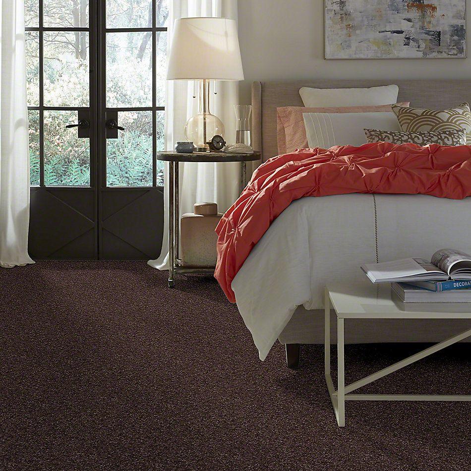Shaw Floors Parlay Mink 00753_E0811