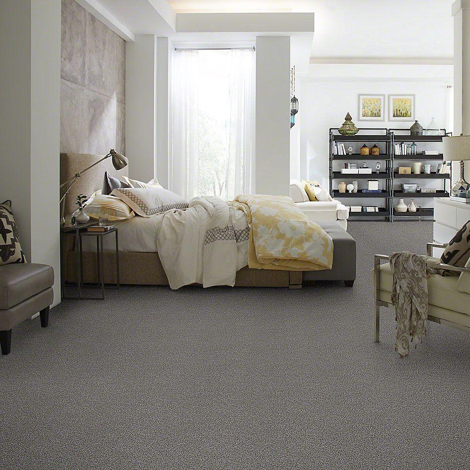 Shaw Floors SFA Totally Convinced Fog 00753_EA558