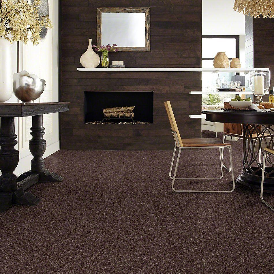 Shaw Floors SFA Dakota Springs Mink 00753_EA604