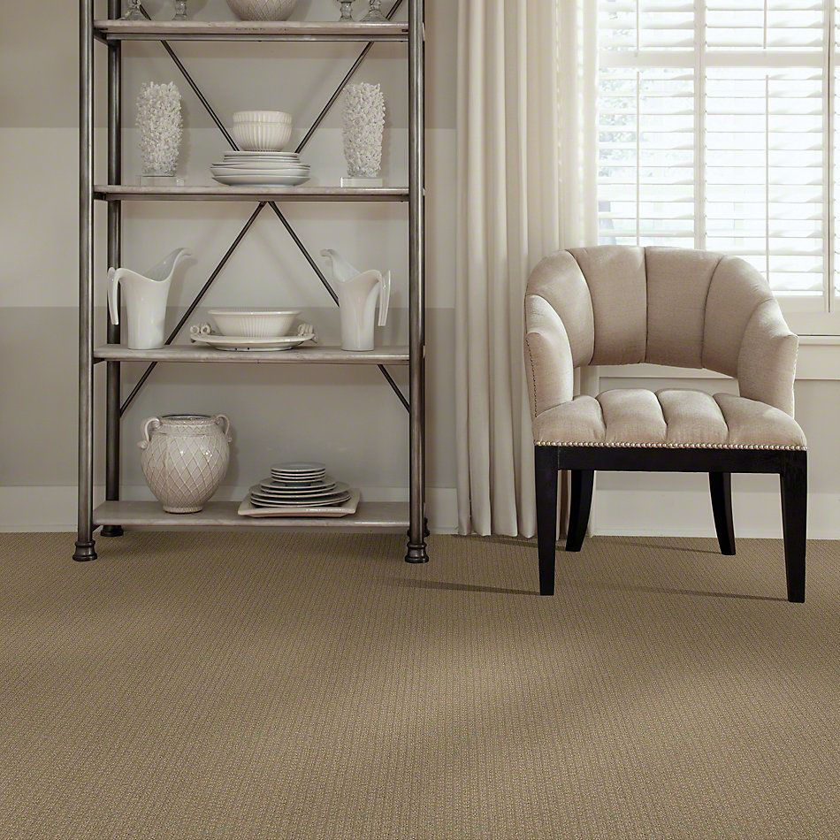 Shaw Floors Value Collections Pacific Trails Net Sable 00754_E0826