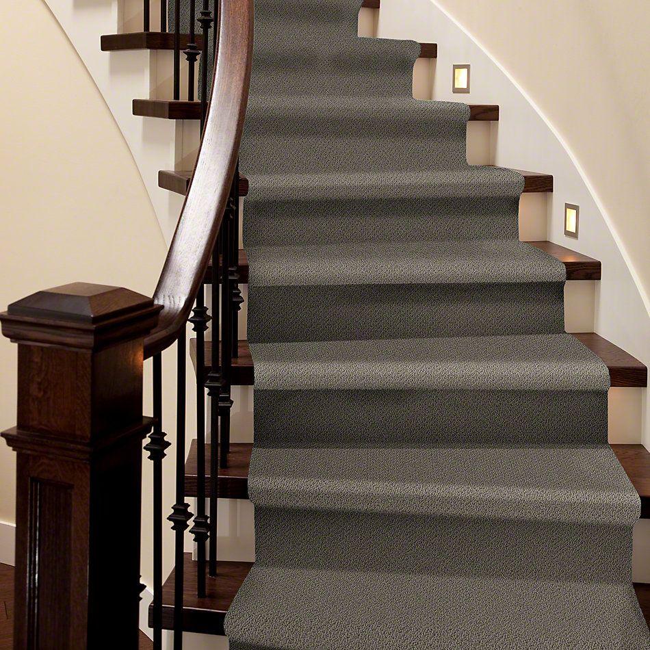 Shaw Floors SFA Artist View Loop Graphite 00754_EA566