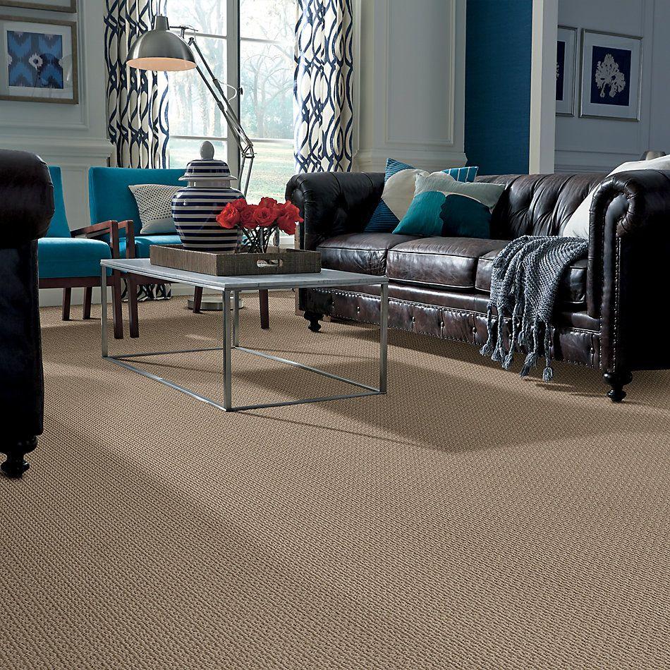 Anderson Tuftex American Home Fashions Proud Design Sable 00754_ZA883
