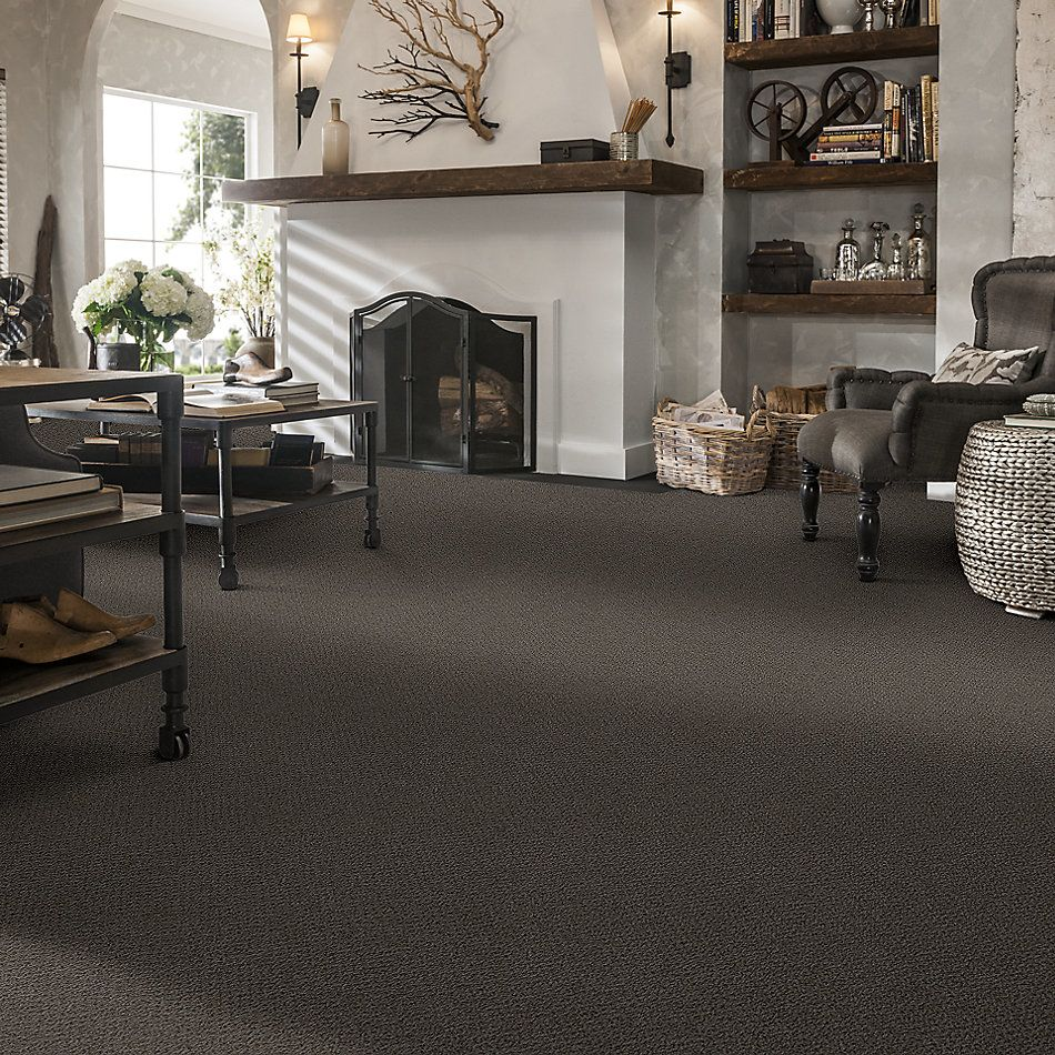Shaw Floors Shaw Flooring Gallery Subtle Shimmer Loop Vintage Leather 00755_5568G