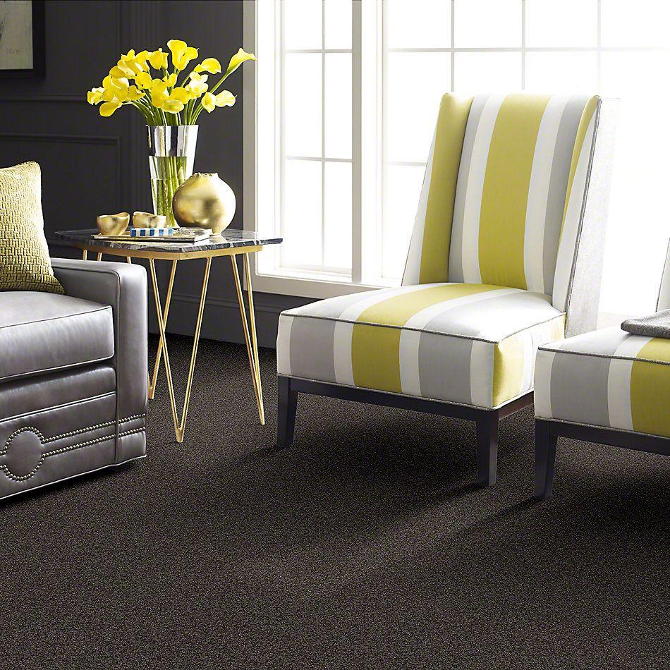 Shaw Floors My Choice I Vintage Leather 00755_E0650