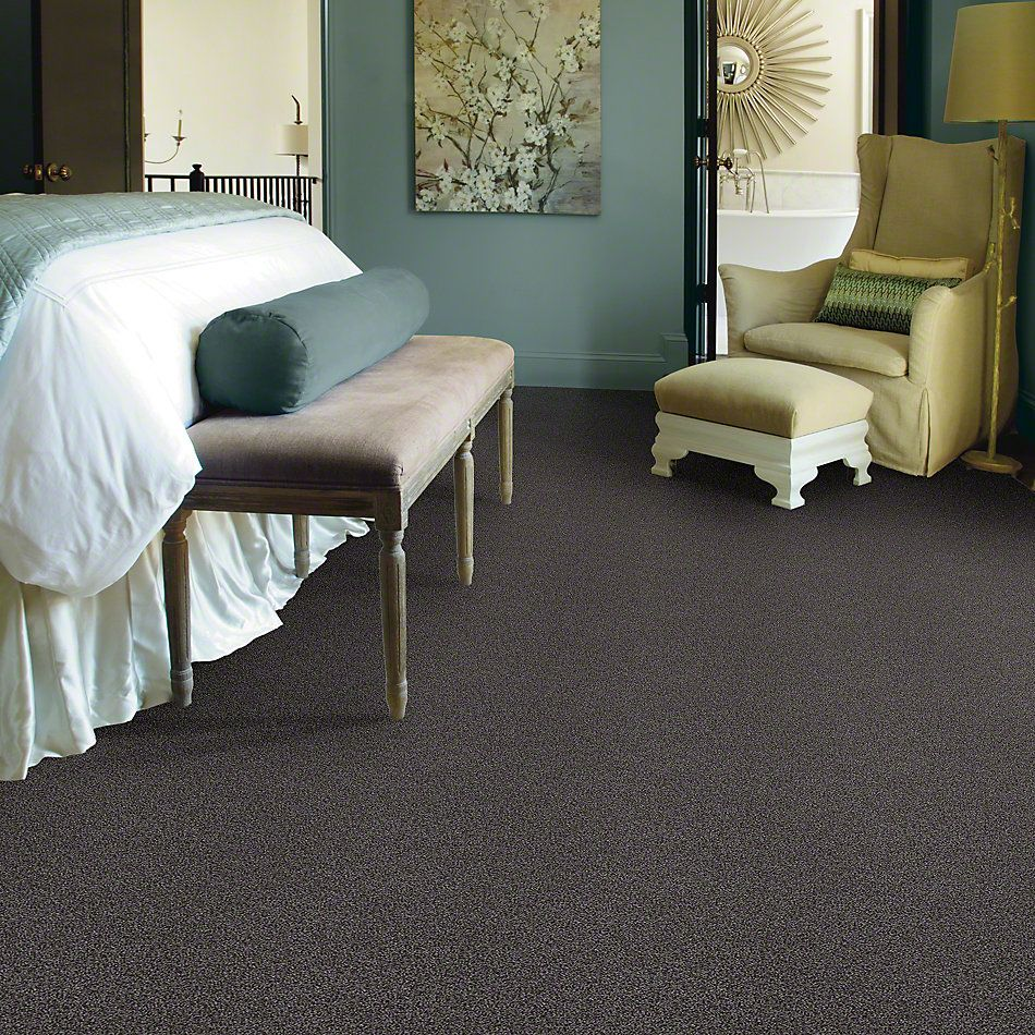 Shaw Floors SFA Totally Convinced Vintage Leather 00755_EA558