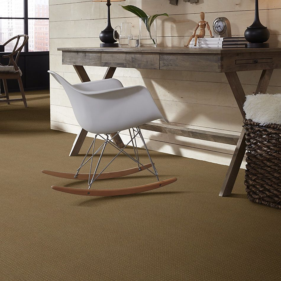 Shaw Floors Shaw Flooring Gallery Inspired By Pattern Cappuccino 00756_5563G