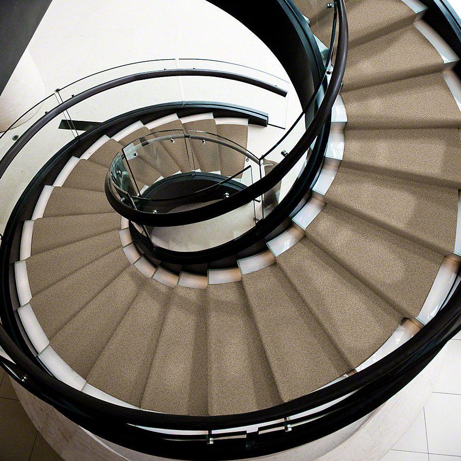 Shaw Floors My Choice II Cappuccino 00756_E0651