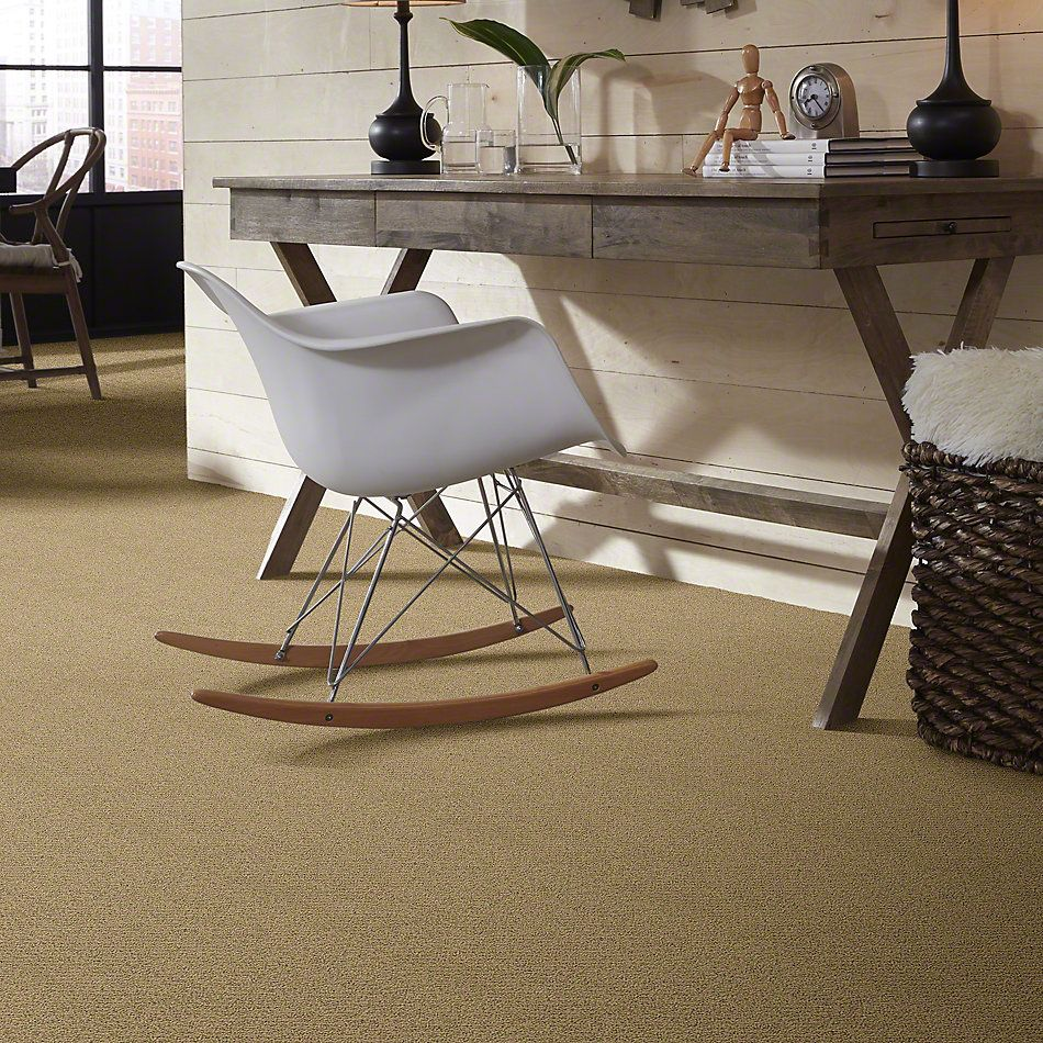 Shaw Floors SFA Artist View Loop Cappuccino 00756_EA566