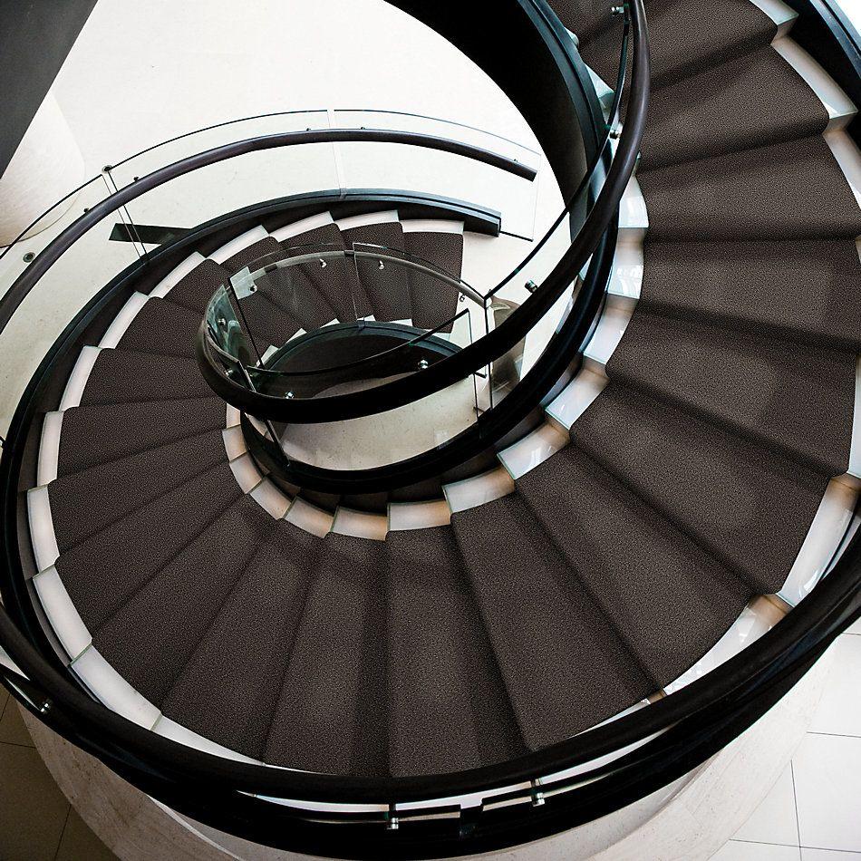 Shaw Floors Inspired By III Chocolate 00758_5562G