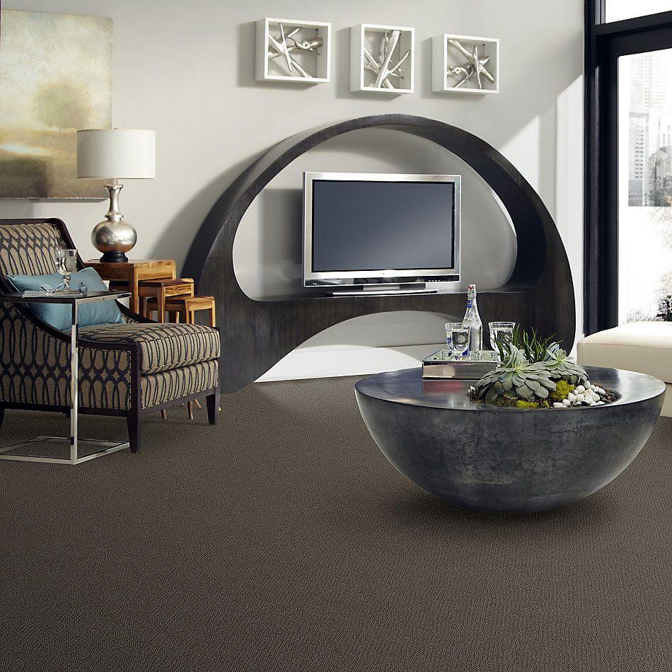 Shaw Floors Shaw Flooring Gallery Subtle Shimmer Loop Chocolate 00758_5568G