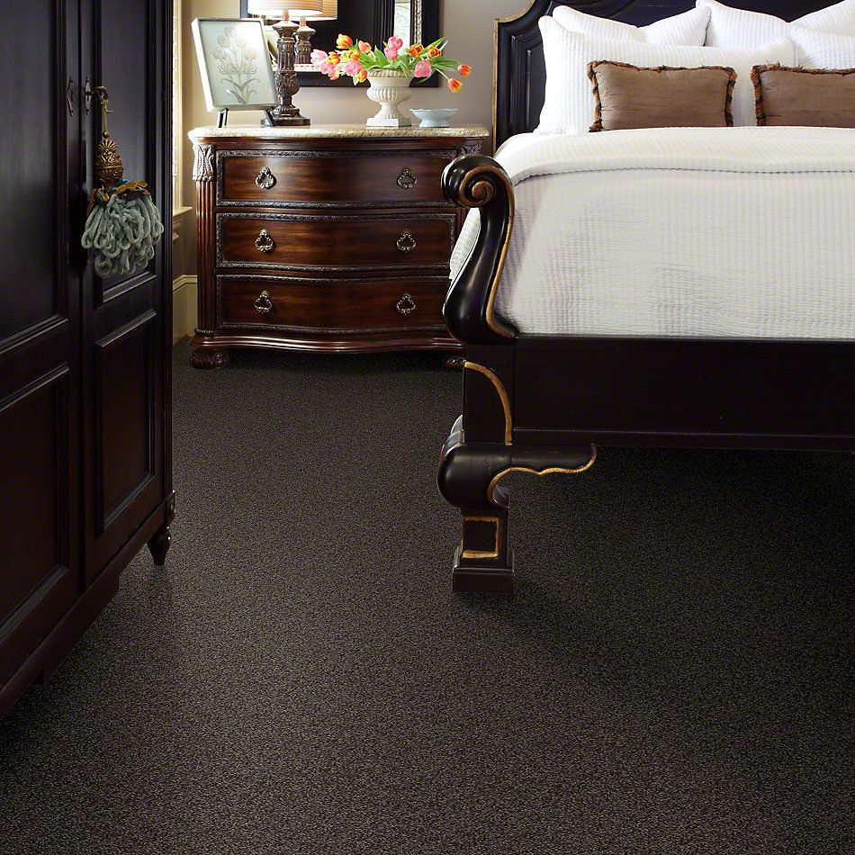 Shaw Floors My Choice I Chocolate 00758_E0650