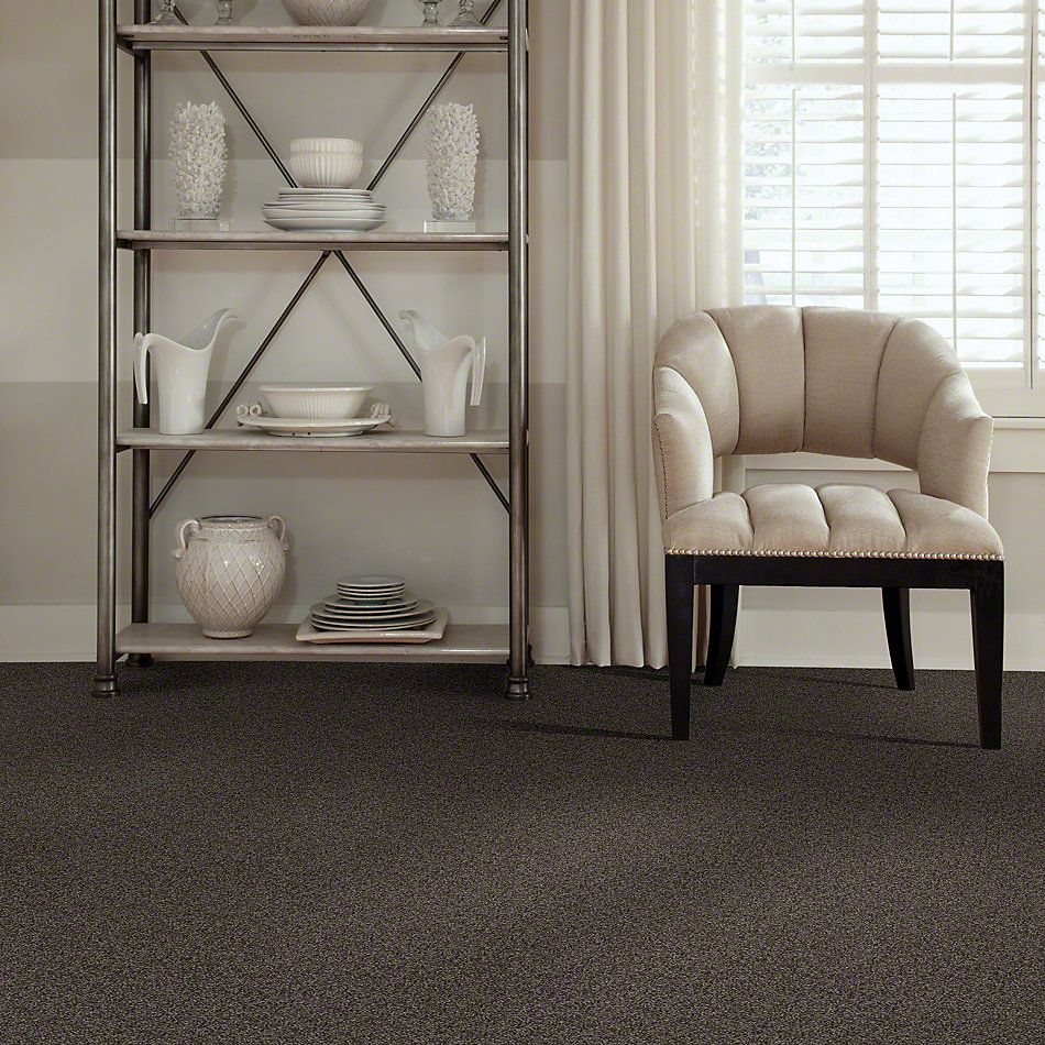 Shaw Floors My Choice II Chocolate 00758_E0651