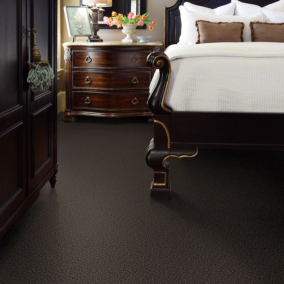 Shaw Floors My Choice III Chocolate 00758_E0652