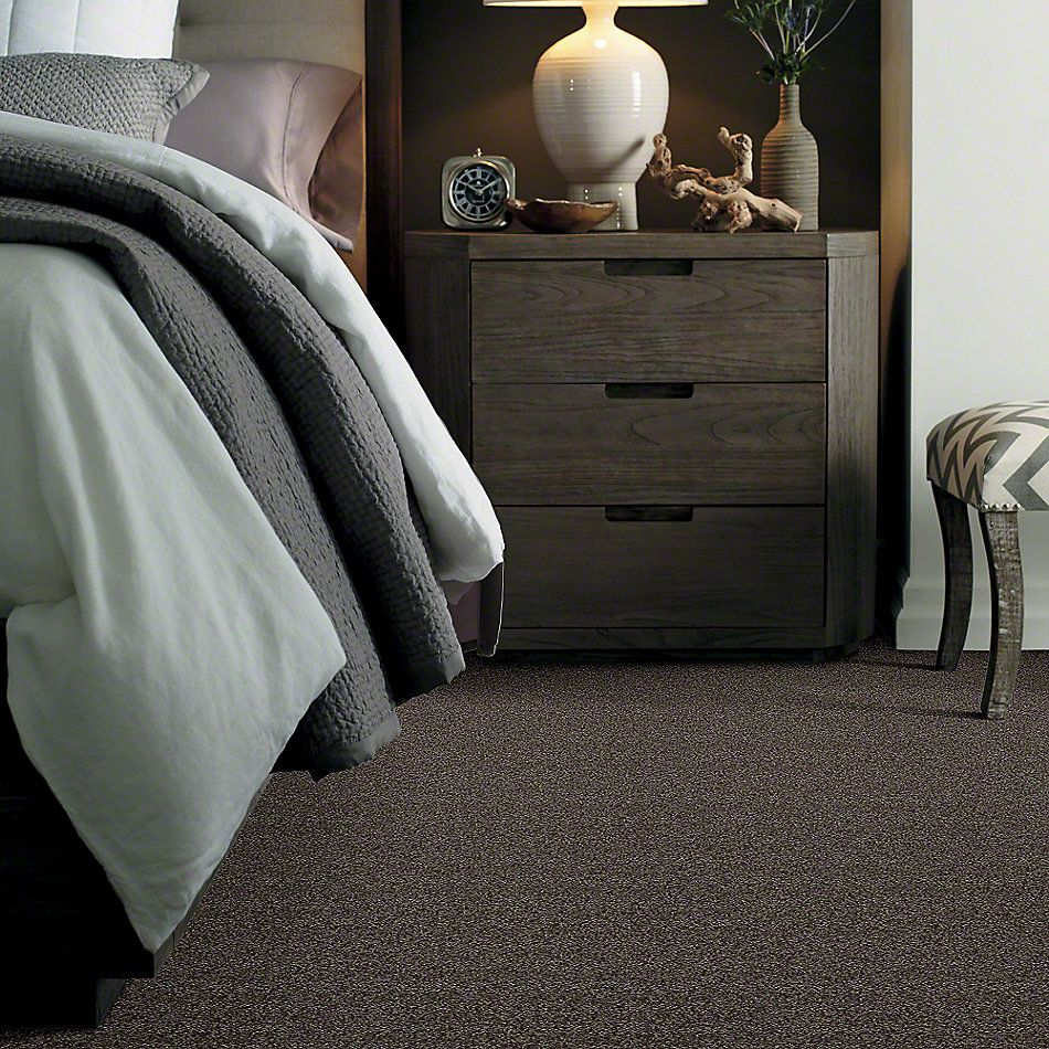 Shaw Floors SFA My Inspiration I Chocolate 00758_EA559
