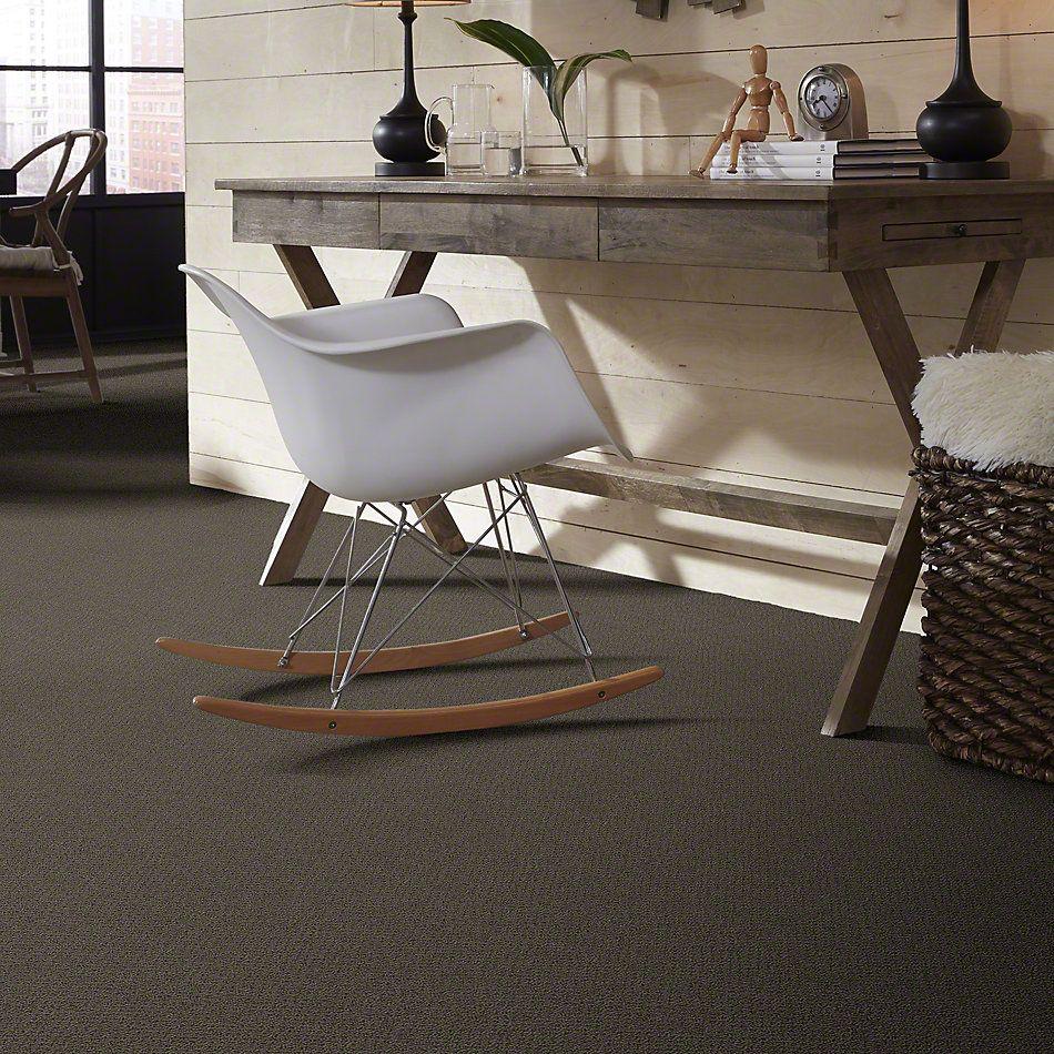 Shaw Floors SFA Artist View Loop Chocolate 00758_EA566