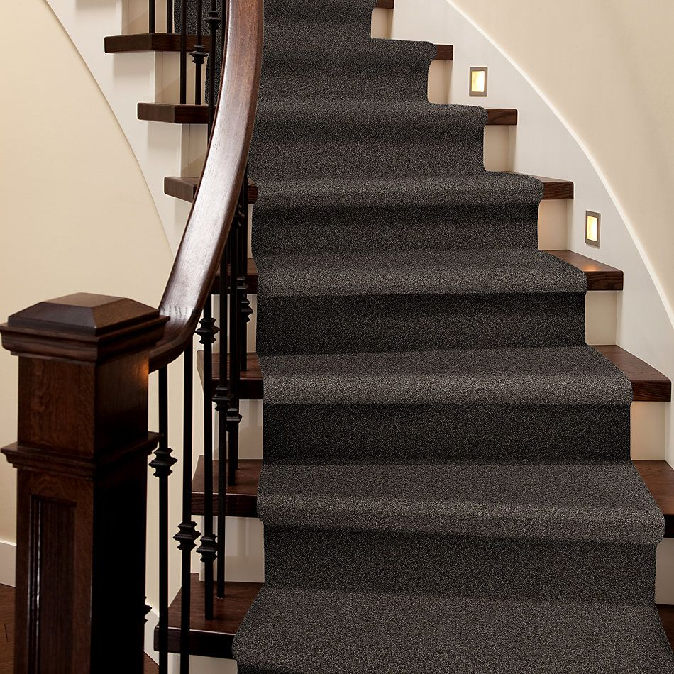 Shaw Floors Nfa/Apg Detailed Elegance III Chocolate 00758_NA334