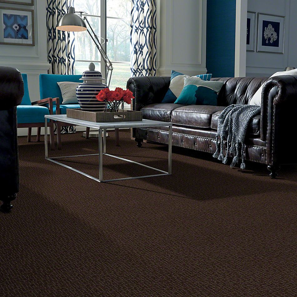 Anderson Tuftex Shaw Design Center What A Life Dark Earth 00759_908SD