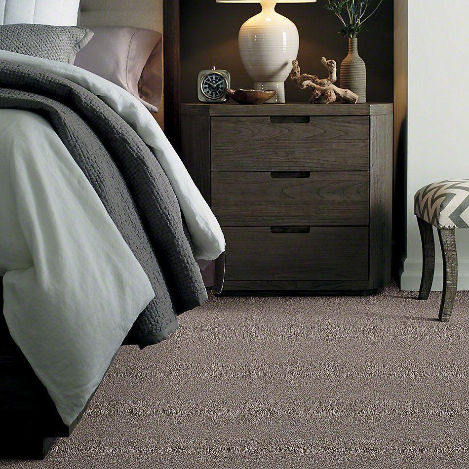 Shaw Floors Foundations Take The Floor Tonal I Tundra 00760_5E008