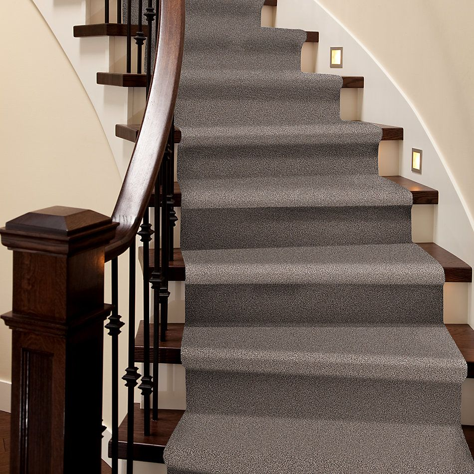 Shaw Floors Value Collections Take The Floor Tonal I Net Tundra 00760_5E072