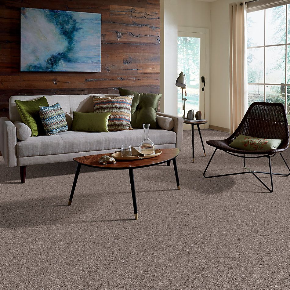 Shaw Floors Value Collections Take The Floor Tonal Blue Net Tundra 00760_5E074