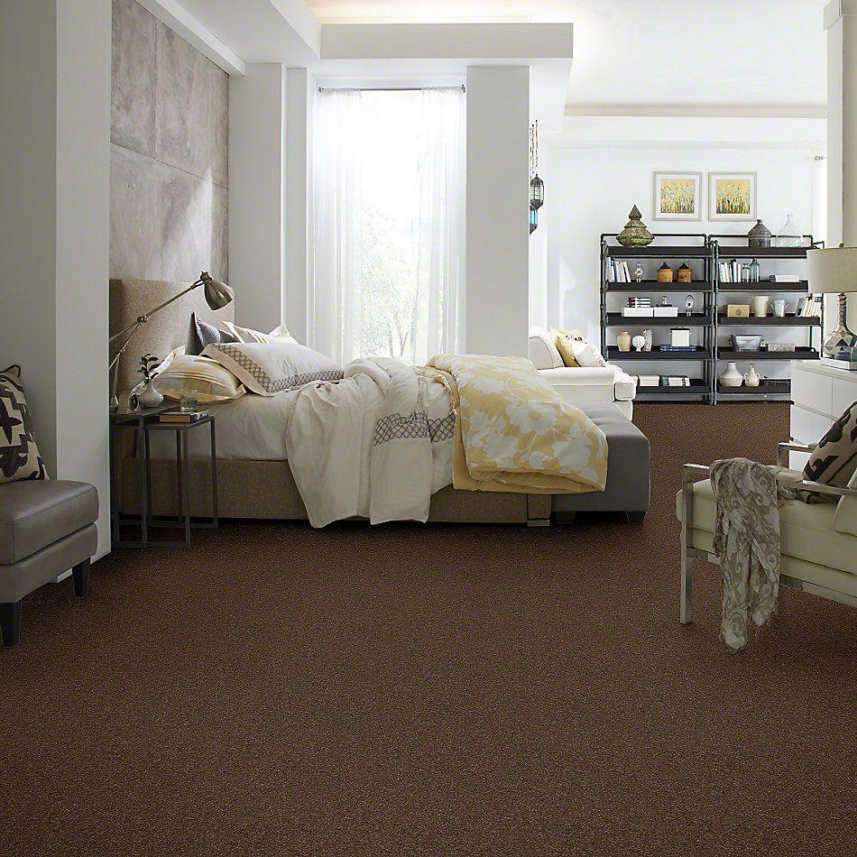 Shaw Floors SFA Queen Of Hearts Brown Rice 00760_EA049